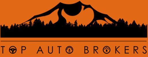 Top Auto Brokers